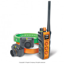 Dogtra T&B Dual 2 Dog Training and Beeper